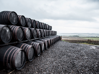 Move over, US! British distillers set their sights on rye whisky