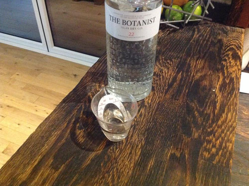 Master of Cocktails Botanist Gin